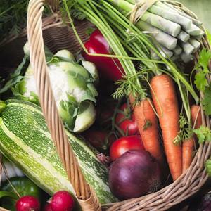 1 raw food diet